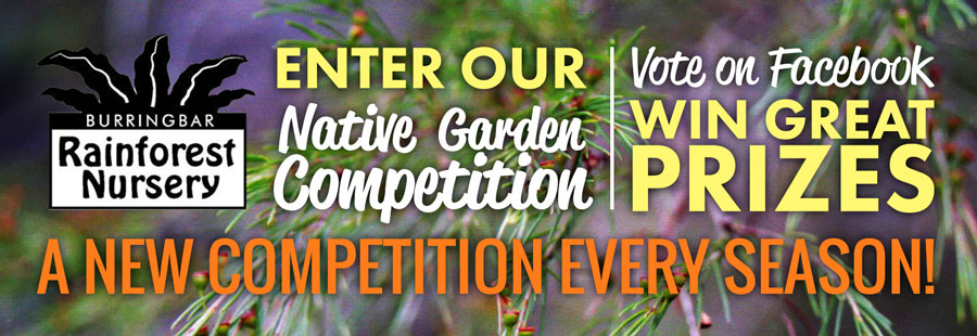 Burringbar Rainforest Nursery Native Garden Competition